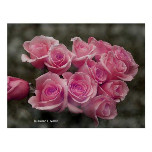 fondo manchado ramo subió colorized rosa postal