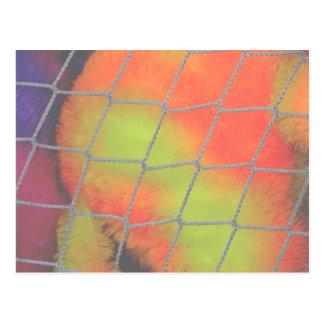 Fondo neto con imagen peluda anaranjada y amarilla postal