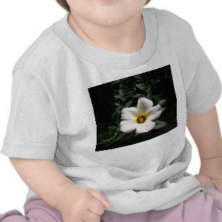 Fondo oscuro de centro rojo de la flor blanca del camisetas