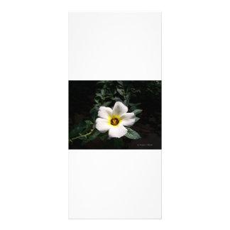 Fondo oscuro de centro rojo de la flor blanca del  tarjetas publicitarias personalizadas