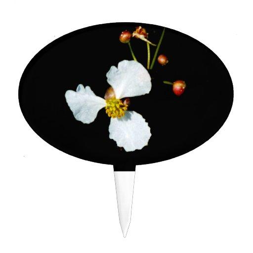 Fondo petaled del negro de la flor blanca tres figuras para tartas