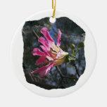 Fondo púrpura de la roca del cielo del árbol n de  adornos de navidad