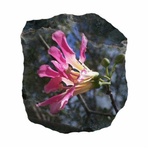 Fondo púrpura de la roca del cielo del árbol n de  fotoescultura vertical
