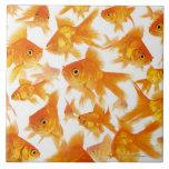 Fondo que muestra un grupo grande de Goldfish Azulejo Cuadrado Grande
