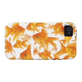Fondo que muestra un grupo grande de Goldfish Vibe iPhone 4 Carcasa
