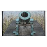 fondo rechoncho de la hierba del agua del canon