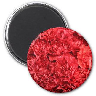Fondo rojo de los claveles imán redondo 5 cm