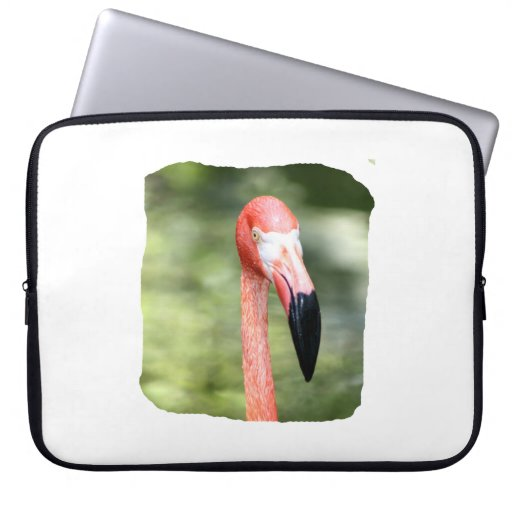 Fondo rosado del verde de la fotografía de la cabe funda portátil