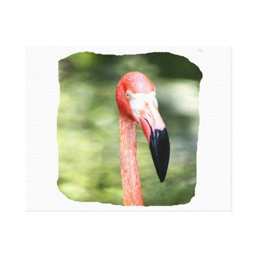 Fondo rosado del verde de la fotografía de la cabe impresión en lienzo estirada