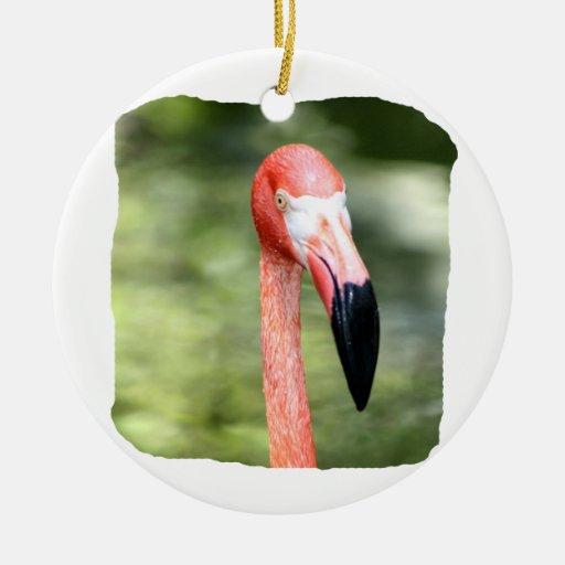 Fondo rosado del verde de la fotografía de la adorno de navidad