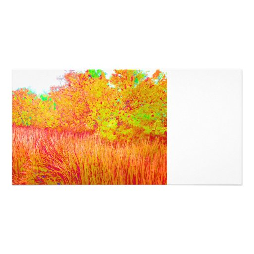 Fondo saturado de la Florida del árbol de hierba Tarjetas Fotográficas Personalizadas
