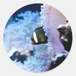 Fondo subacuático pegatina redonda