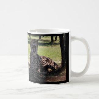 Fondo taza-negro de bostezo del guepardo de la taza de café