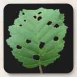 Fondo verde del negro de la hoja posavasos