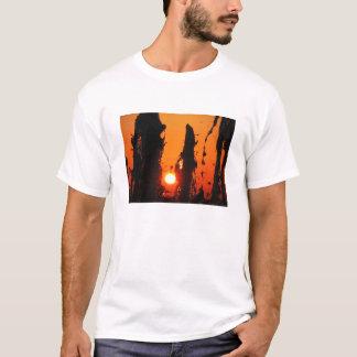Fontain Water at Sunset T-Shirt