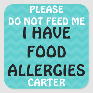 Food Allergy Alert Do Not Feed Stickers