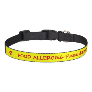 Food Allergy Medical Alert-Yellow Pet Collar