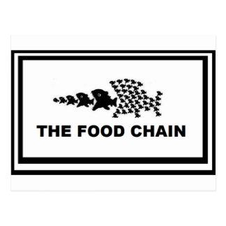 Food Chain Postcard