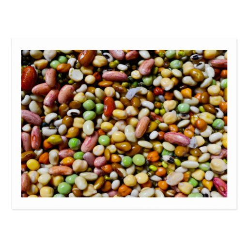 FOOD Craft Junkies :  Exotic Beans Spectrum Postcards