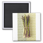 Food, Food And Drink, Vegetable, Asparagus, 2 Inch Square Magnet