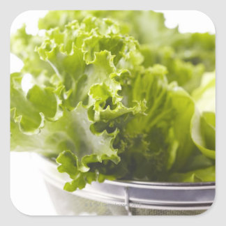Food, Food And Drink, Vegetable, Lettuce, Square Sticker