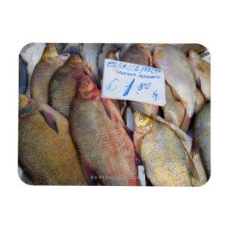 Food market in Italy Rectangular Photo Magnet