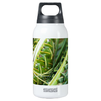 Food preparation for a lovo insulated water bottle
