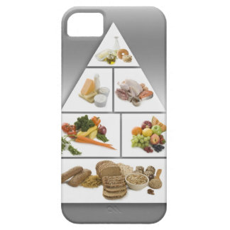 Food pyramid iPhone SE/5/5s case