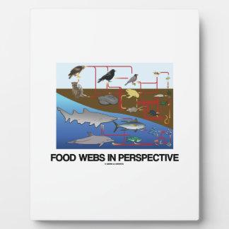 Food Webs In Perspective (Ocean Land Biology) Plaque