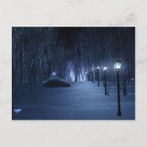 Fool's Light Postcard