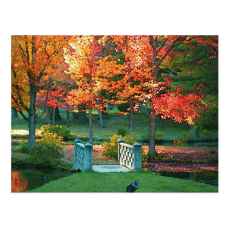 Foot Bridge in Fall Post Card