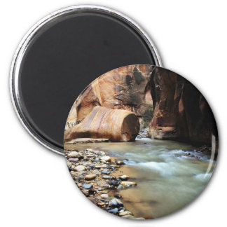 Foot Like Rock In Zion Narrows 2 Inch Round Magnet