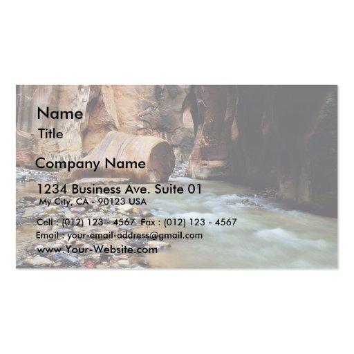 Foot Like Rock In Zion Narrows Business Card