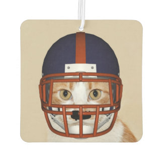 Football playing kitty cat air freshener