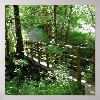 Footbridge in Woodland. Poster