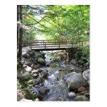 Footbridge Smooth Rocks In A Stream Postcard