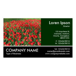 Footed Photo - Bed of Red Tulips 02 Business Card
