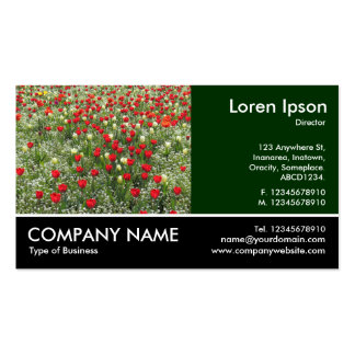 Footed Photo - Bed of Tulips Business Card