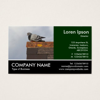 Footed Photo - Good Morning Pigeon Business Card
