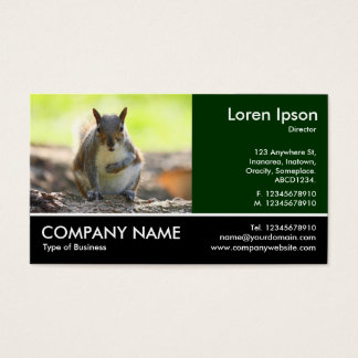 Footed Photo - Grey Squirrel Business Card