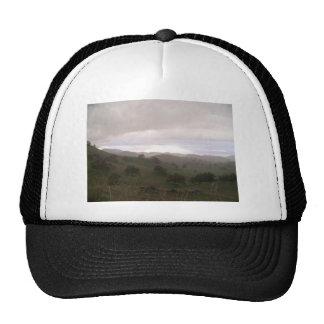 Foothills and mist trucker hat
