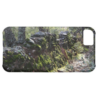 Footpath covered with nature in the mountain range iPhone 5C cover