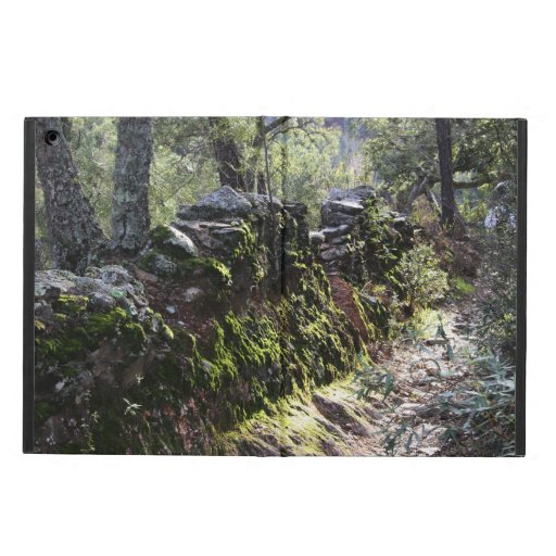 Footpath covered with nature in the mountain range iPad air cover