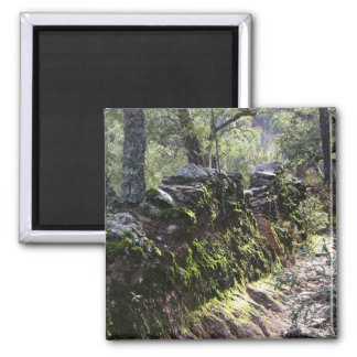 Footpath covered with nature in the mountain range 2 inch square magnet