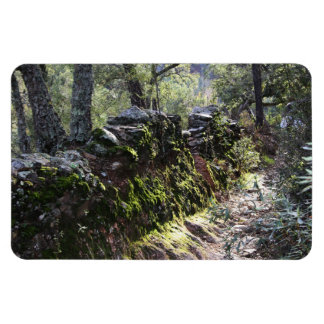 Footpath covered with nature in the mountain range rectangular photo magnet