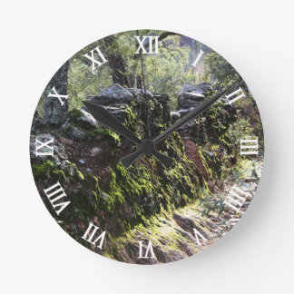 Footpath covered with nature in the mountain range round clock