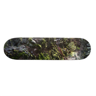 Footpath covered with nature in the mountain range skateboard deck