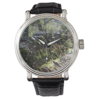 Footpath covered with nature in the mountain range wrist watch