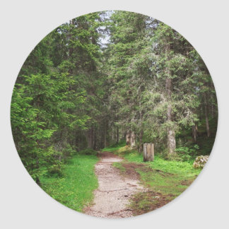 footpath on forest classic round sticker