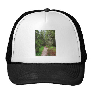 footpath on forest mesh hats